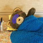 teddy bear sleepover 2